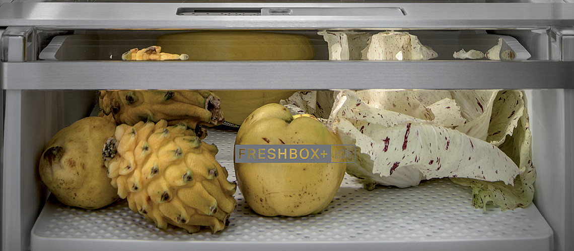 FreshBox+ slika